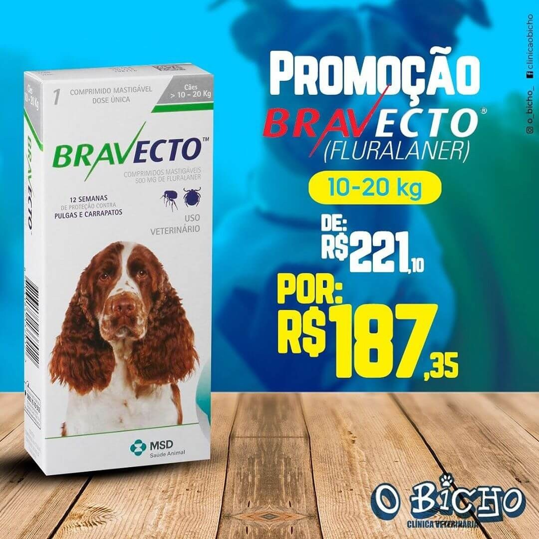 Promoções Clínica O Bicho!